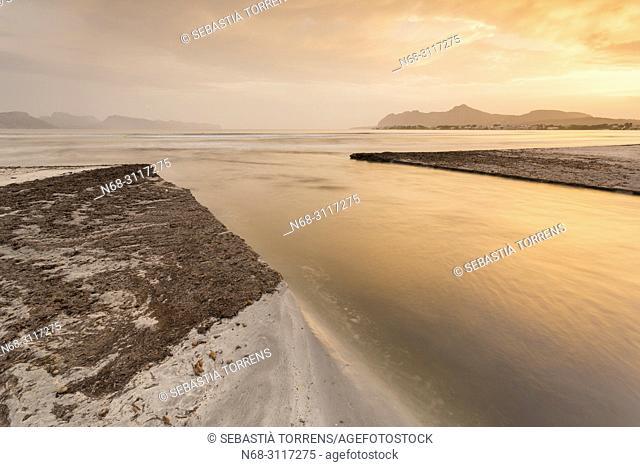 La Gola de s'Albufereta, Alcudia, Pollensa bay, Majorca, Sapin