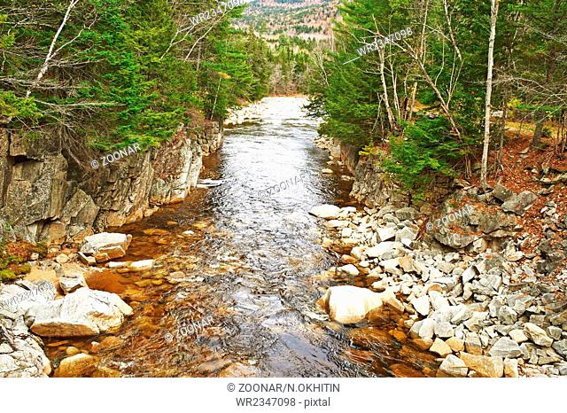 Swift River in White Mountain National Forest