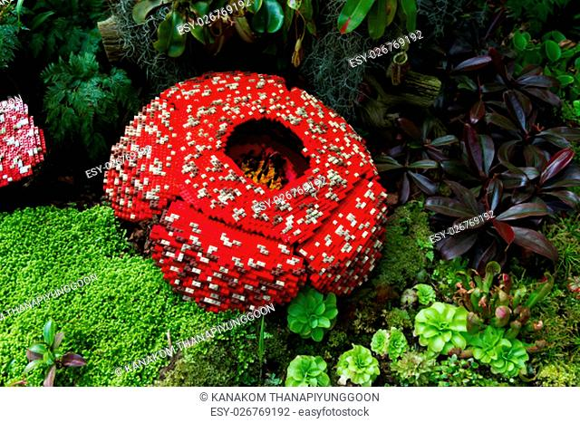 Corpse flower is made of interlocking plastic bricks toy. Corpse flower is the largest individual flower on earth. Stinking corpse lily