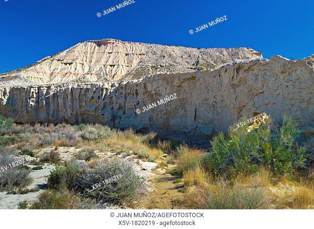Bardenas, Navarre, Spain, Europe, Biosphere Reserve