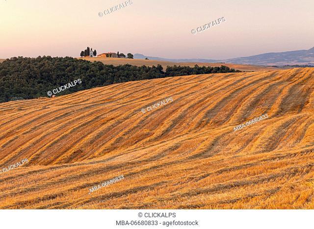 Vitaleta chapel, Orcia valley, Pienza, Siena province, Tuscany, Italy