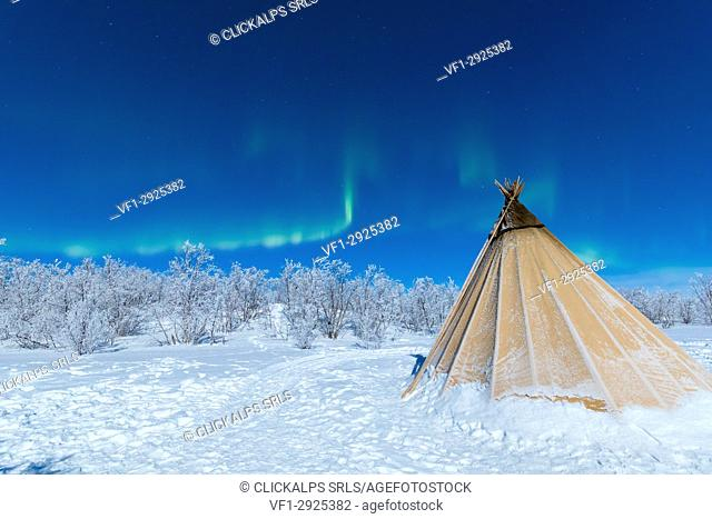 Isolated Sami tent in the snow under Northern Lights, Abisko, Kiruna Municipality, Norrbotten County, Lapland, Sweden