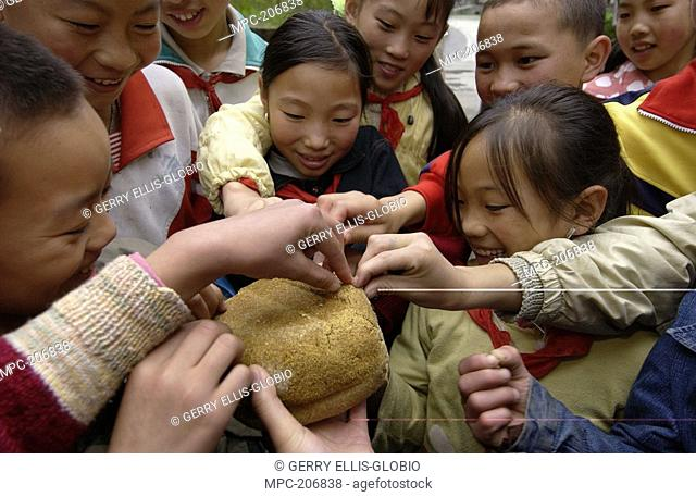 Children visiting the China Conservation and Research Center for the Giant Panda inspect panda bread made from bamboo, grains, rice and vitamins