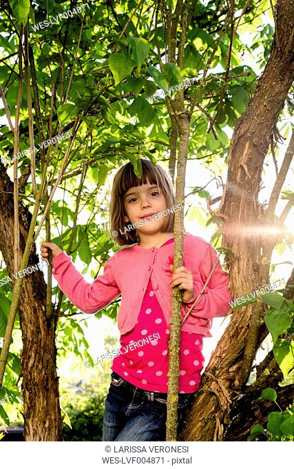 Portrait of little girl climbing in a tree