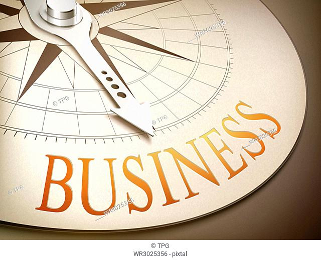 3d illustration compass needle pointing the word business