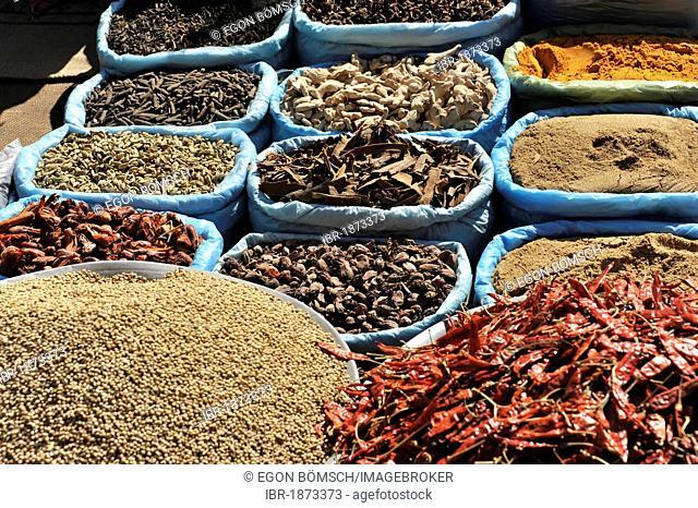 Spices, spice shop, Kathmandu, Nepal, Asia