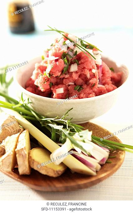Tartare of meat with chives and onions