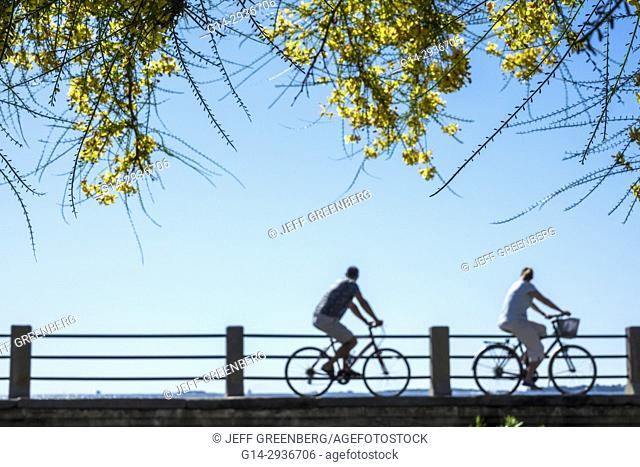 South Carolina, SC, Charleston, waterfront, East Battery, seawall, promenade, bicycle