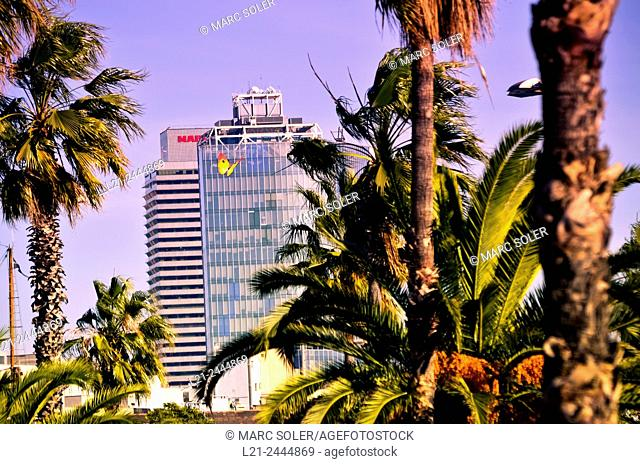 Palms. Mapfre tower, Hotel Arts and Torre Mare Nostrum, head office of Gas Natural . Barcelona, Catalonia, Spain