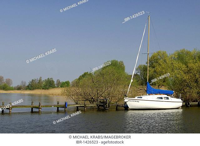 Sailing boat, Duemmer Lake, Oldenburger Muensterlandschaft nature reserve, near Duemmerlohhausen, Lower Saxony, Germany, Europe