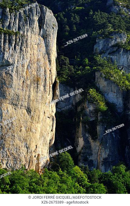 Rock formation named Vase de Chine et Vase de Sèvres in les Gorges duTarn, Lozère 48, région Languedoc-Roussillon-Midi-Pyrénées, France, Europe