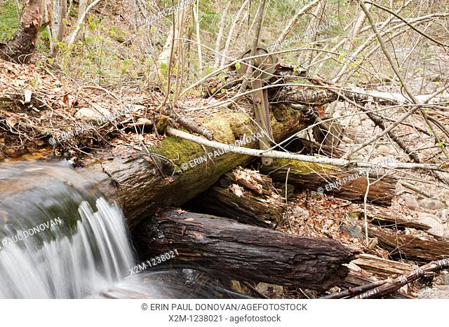 Remnants of a splash dam along Flume Brook near the old logging Camp 5 site in Waterville Valley, New Hampshire. Splash dams were used to hold back rushing...