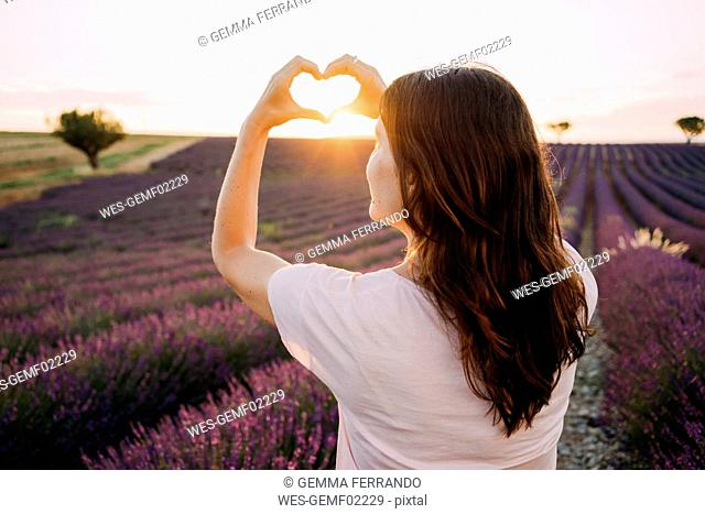 France, Valensole, back view of woman shaping heart with her hands in front of lavender field at sunset