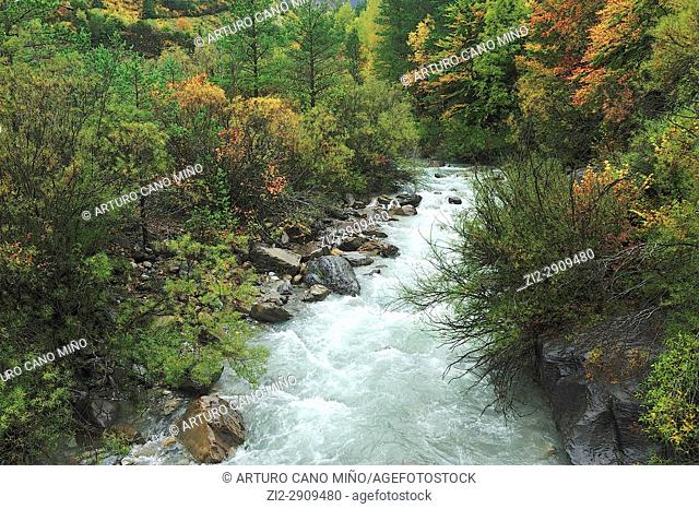 The river Ara. Valley of Ordesa and Monte Perdido National Park. Aragonese Pyrenees, Huesca province, Spain
