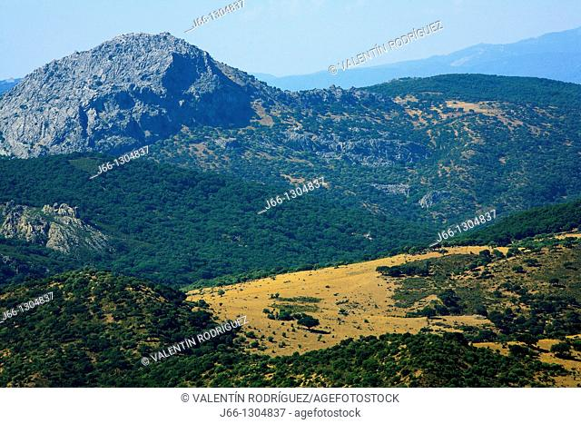 Landscape, Sierra de Grazalema Natural Park, Cadiz province, Andalusia, Spain