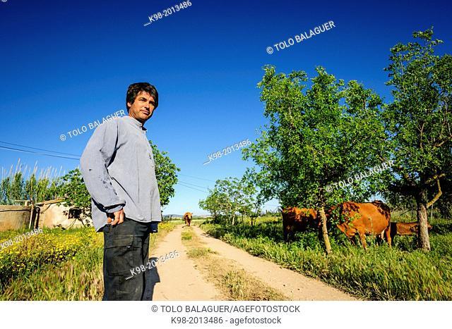 Farmer Toni Feliu, president of the Associació de Varietats Locals of Majorca, Majorca, Balearic Islands, Spain