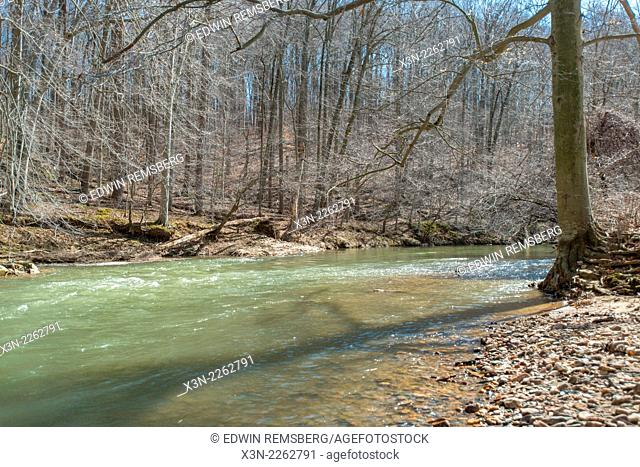 Deer Creek river surrounded by trees in Street Maryland