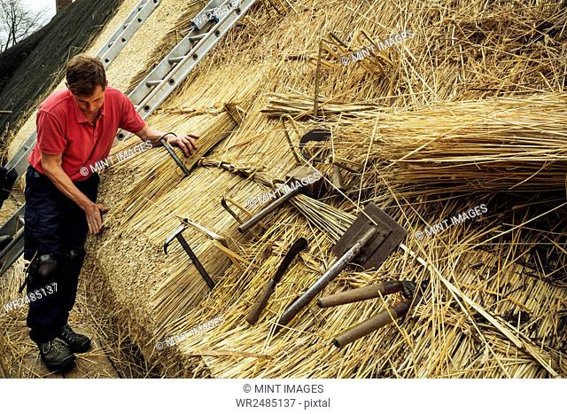 Man thatching a roof, thatching tools, including a wooden mallet, shears, a leggett and hooks