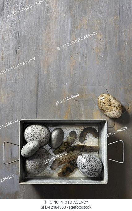 Sea cucumbers and stones in a oven dish