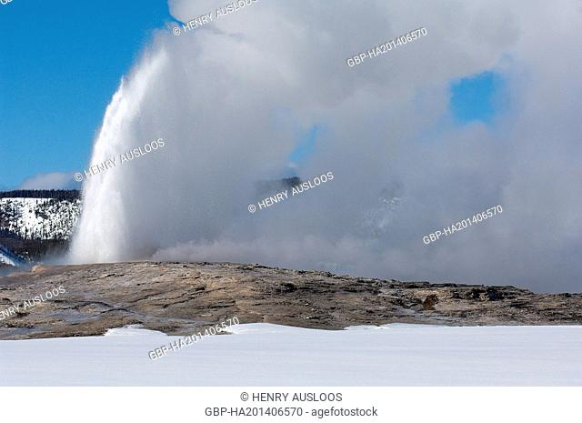 North America - USA - Yellowstone - Hot Springs in winter - Geyser Old Faithful