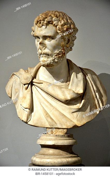 Ancient marble bust of Roman emperor Antoninus Pius, Museo Palatino, Palatino, Rome, Lazio, Italy, Europe