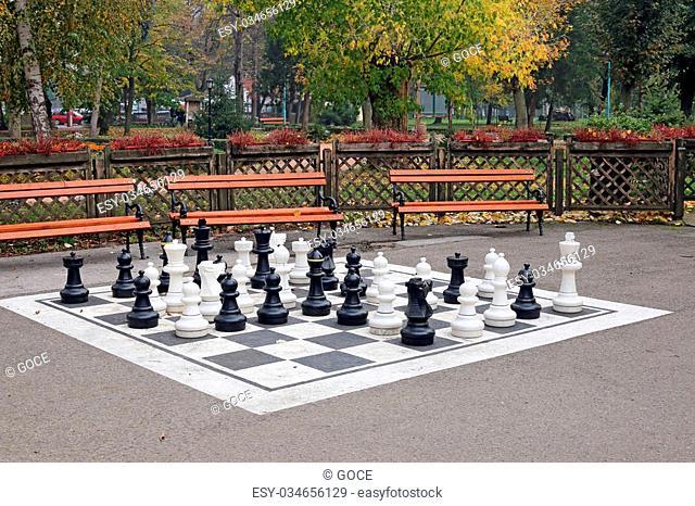 chess figures in park autumn season
