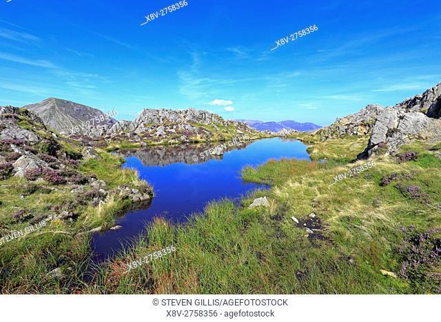 Haystacks summit tarn, Cumbria, Lake District National Park, England, UK