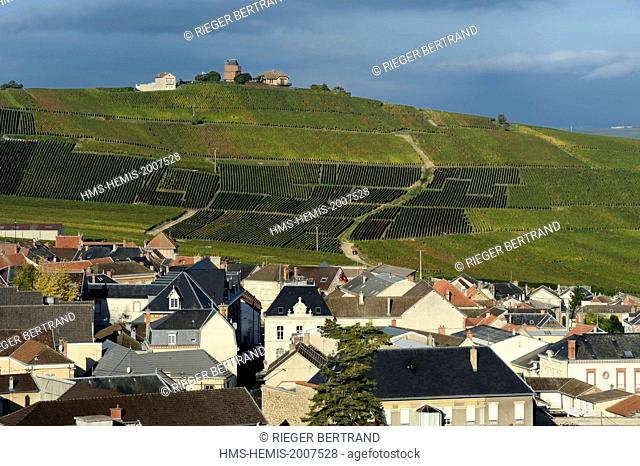 France, Marne, Parc Naturel de la Montagne de Reims (Natural Park of Montagne de Reims), Verzenay, Champagne vineyards