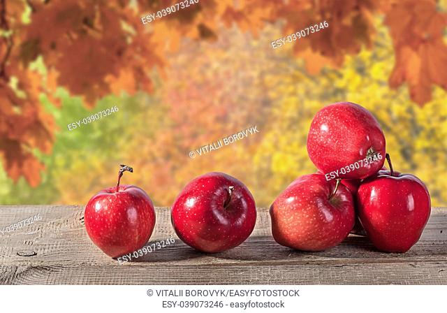 Red apples on a wooden table. Autumn forest in the background. Blurred background