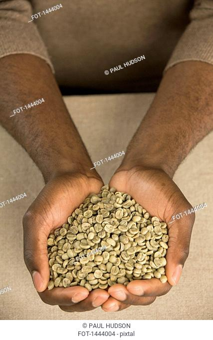 Cropped image of man holding raw coffee beans in cupped hands at table