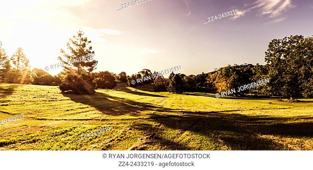 High resolution 4 image combined photo panoramic of an Australian autumn park taken late afternoon. Montville, Sunshine Coast, Queensland, Australia