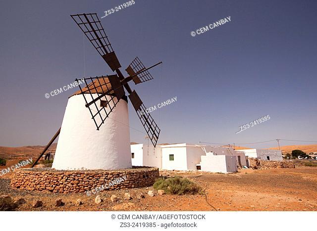 Windmill near Antigua, Fuerteventura, Canary Islands, Spain, Europe