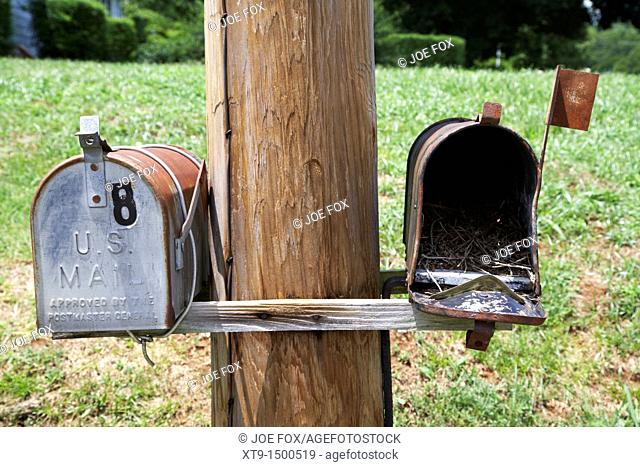 empty old used american private mailboxes one with birdsnest in Lynchburg, tennessee, usa