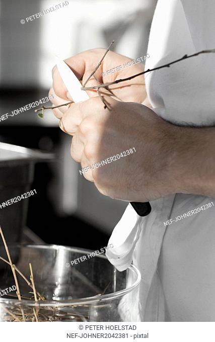 Man cutting twigs