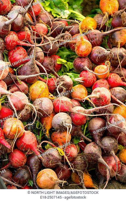 Canada, BC, Saltspring Island, Ganges. Red, purple and golden organic beets for sale at the Ganges Sunday Farmers Market