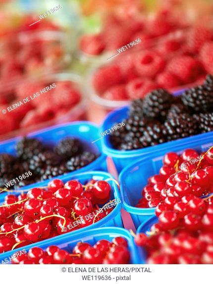 Blueberries, raspberries and blackberries trays at a food market
