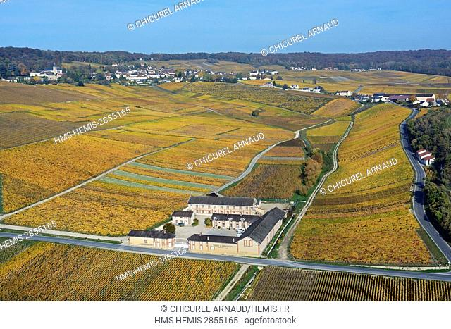 France, Marne, Hillsides of Champagne listed as World Heritage by UNESCO, Hautvillers, Moët et Chandon estate (aerial view)