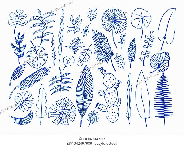 Vector set of bright tropical plants. Colorful hand-drawn Leaves, Inflorescences, Flowers. Blue color