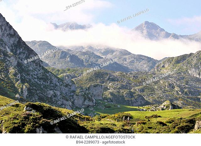 Picos de Europa National Park. Covadonga Lakes area. Cangas de Onis Council. Principaly of Asturias. Spain