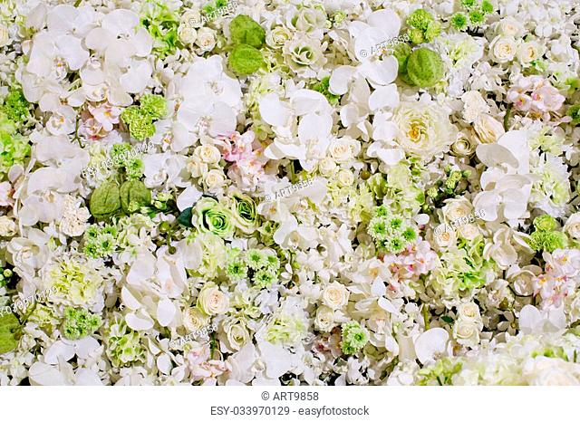 white flowers background texture