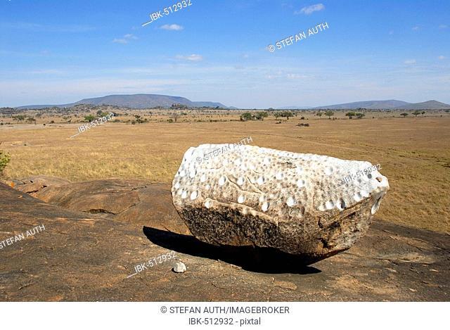 Gong Rock at Muru Kopjes Serengeti National Park Tanzania