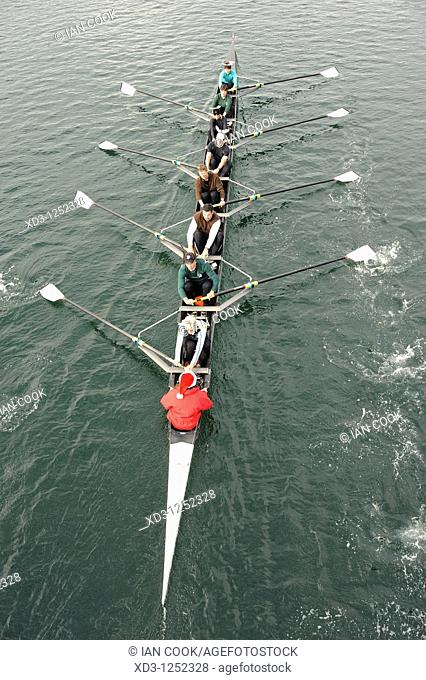 Rowing team in the Gorge waterway, Victoria, British Columbia, Canada