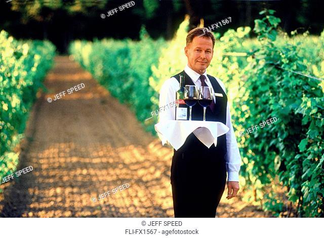 Waiter in Vineyard, Niagara on the Lake, Ontario
