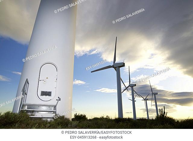 Windmills for electric power production at sunset, Zaragoza Province, Aragon, Spain