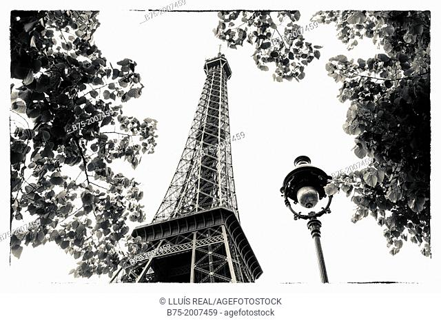 View of the Eiffel Tower with trees and a lamppost in Paris, France, Europe