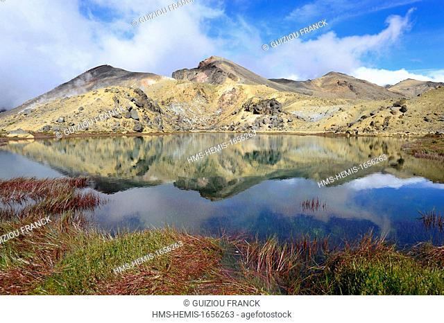 New Zealand, North Island, Tongariro National Park is the first national park in New Zealand and the fourth to emerge globally (UNESCO World Heritage) ; the...