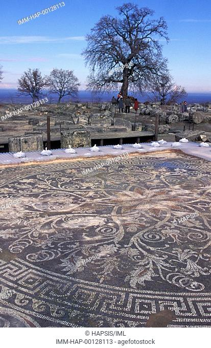 Mosaic floor, Palace of Philip II  Vergina, Macedonia Central, Greece
