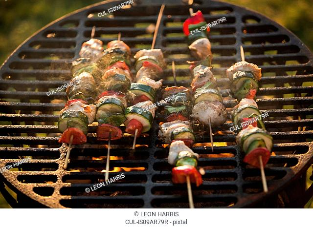 Meat and vegetable kebabs on barbecue