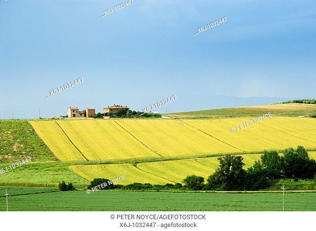 Umbrian countryside with farmhouse near Paciano close to Lake Trasimeno