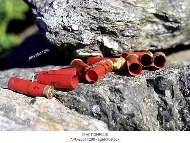 Empty shotgun shells on a rock